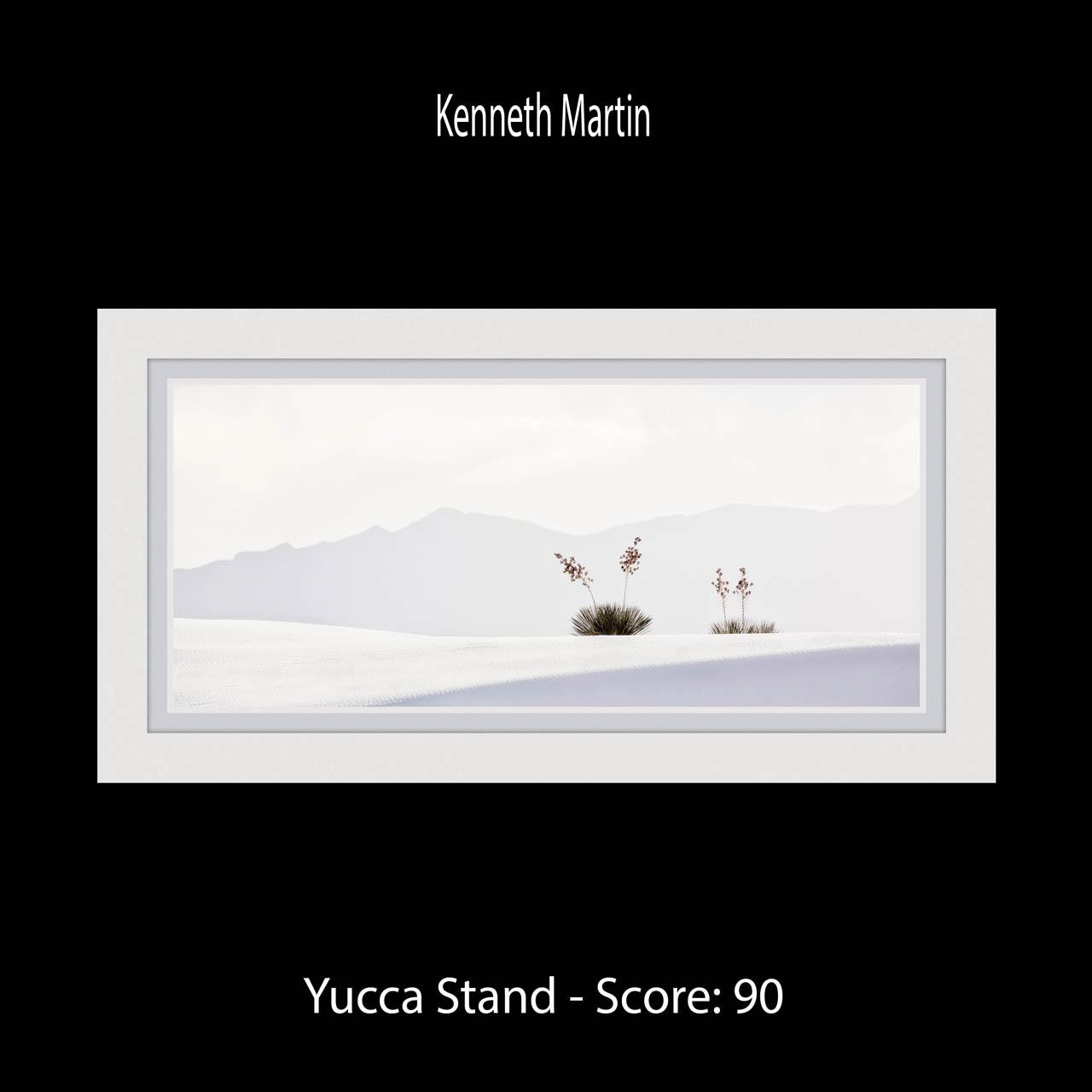 Page 20 Martin Yucca Stand