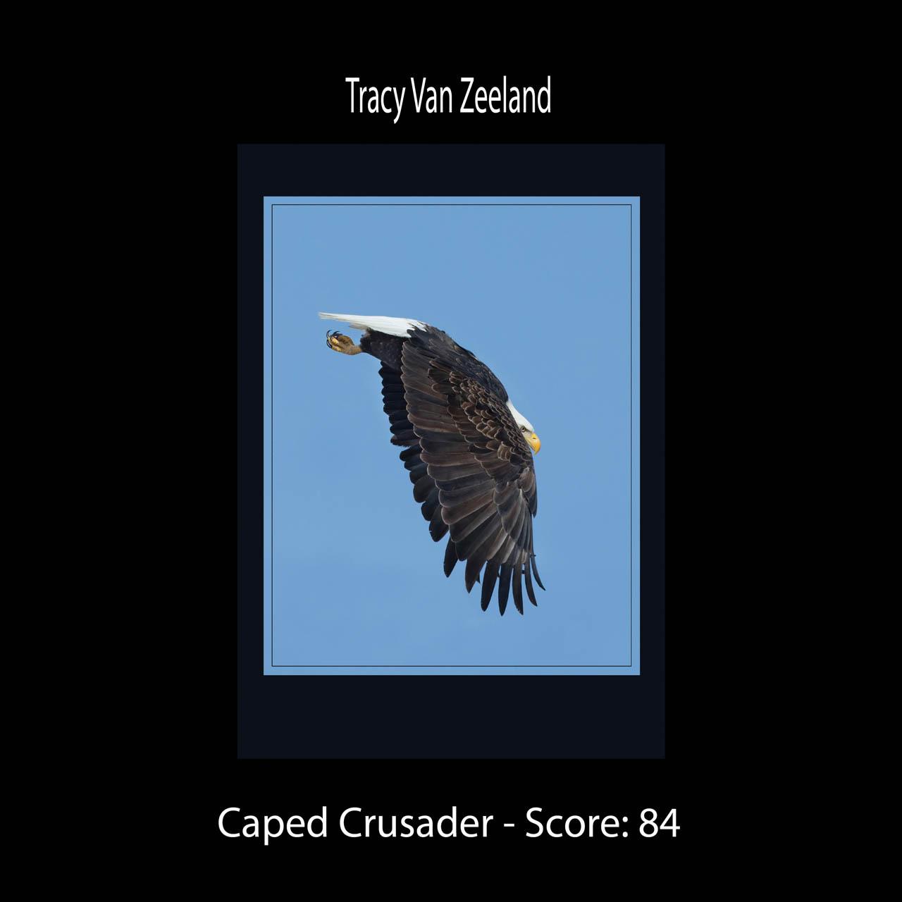 Page 40 VanZeeland Caped Crusader