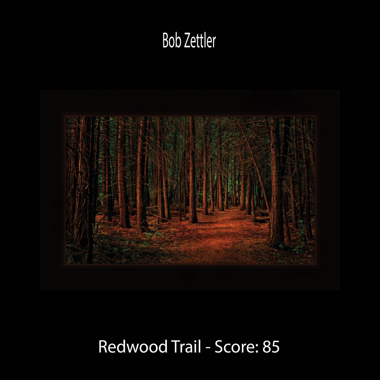 Page 46 Zettler Redwood Trail
